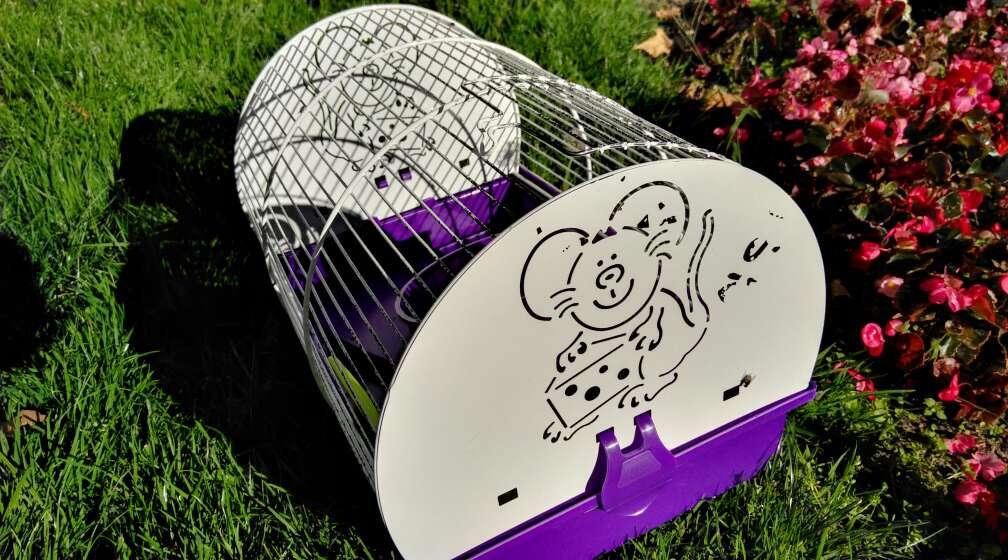 Imagen jaula de hamster