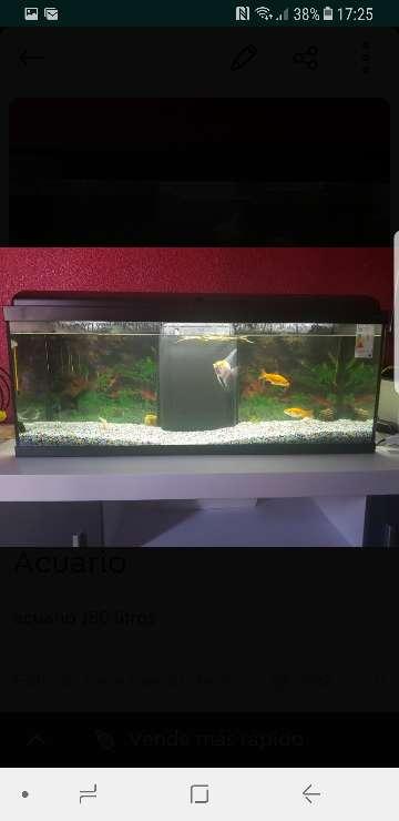 Imagen acuario 180 litros