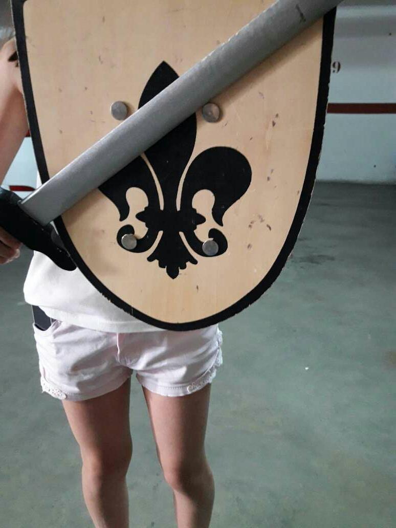 Imagen espada y escudo