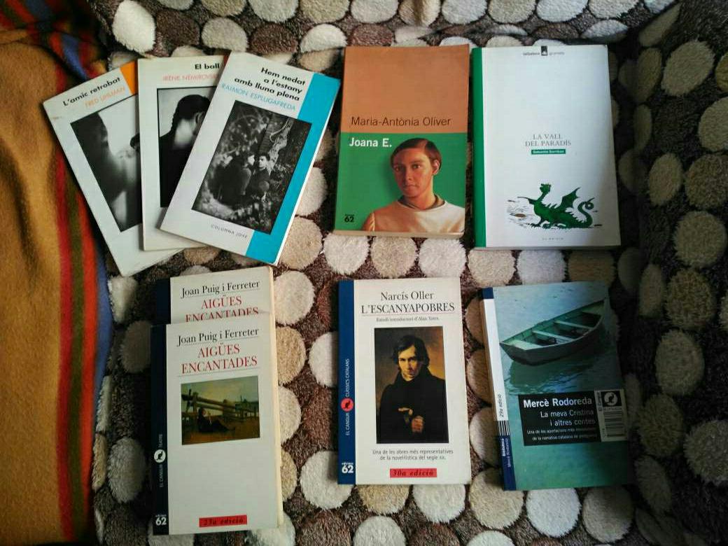 Imagen Lote libros en catalán