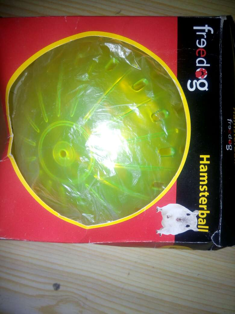 Imagen hamsterball