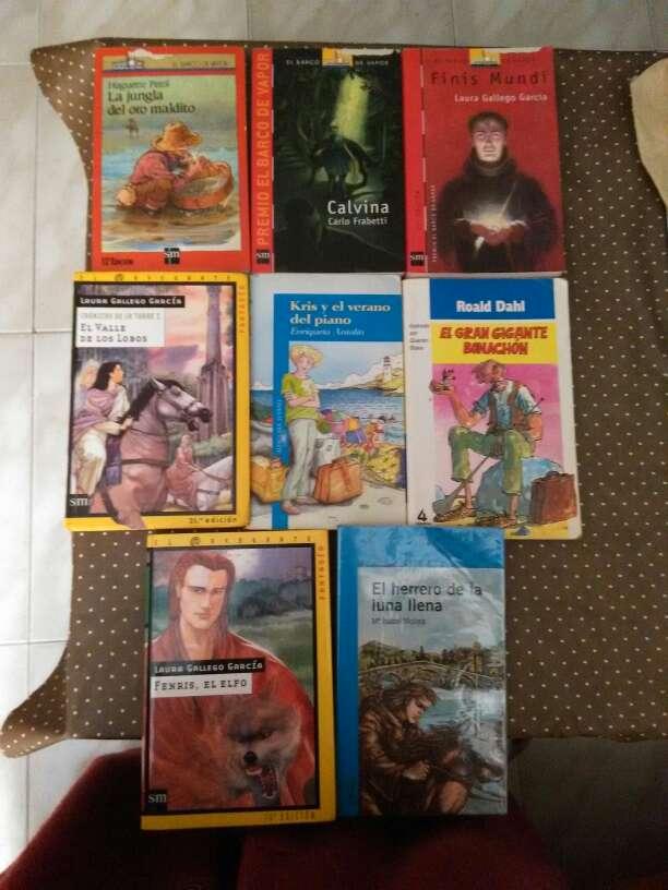 Imagen Libros lectura desde 12 años