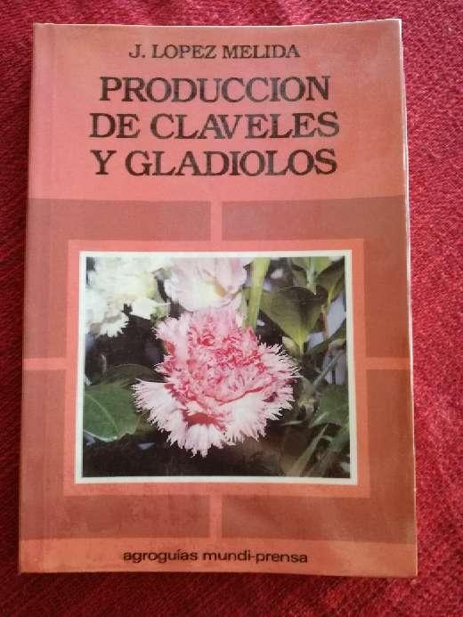 Imagen Producción de claveles y gladiolos