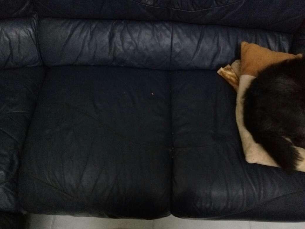 Imagen sofa de cuero