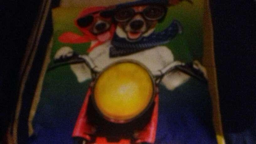 Imagen cojin de dos  perritos en una moto .
