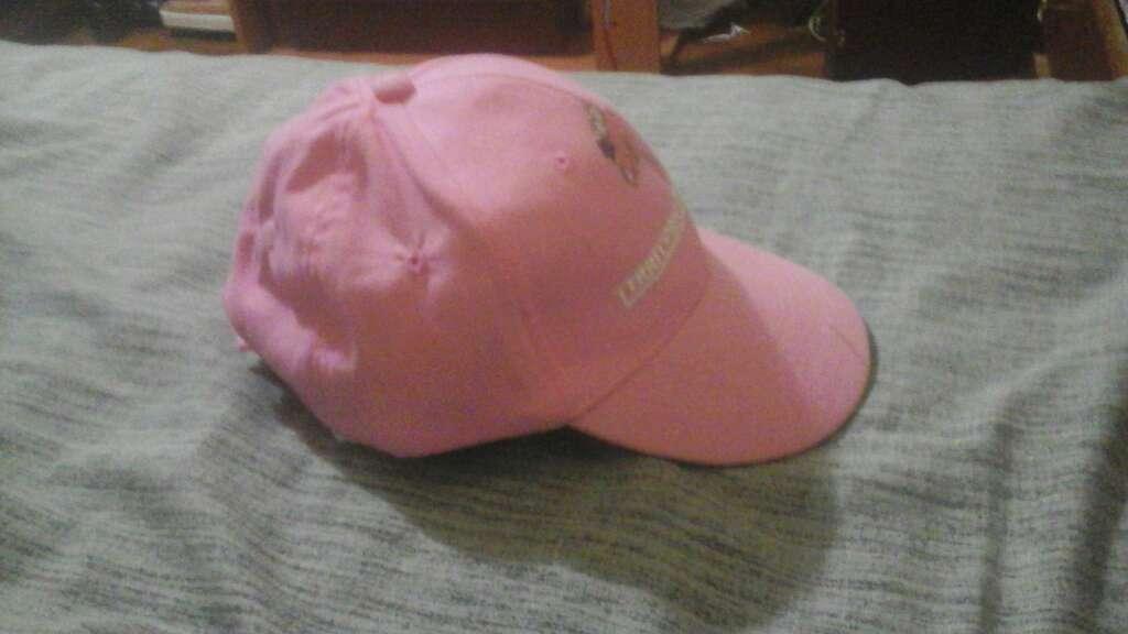 Imagen Es una gorra rosada de dinopolis