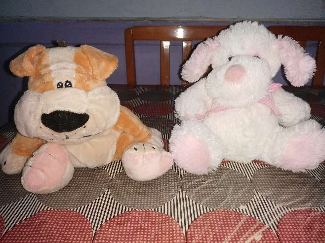 Imagen producto Peluches susves 7