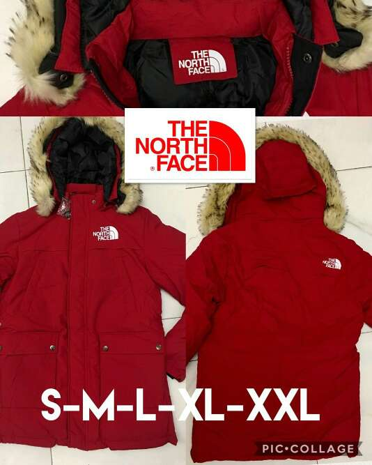 Imagen chaqueta the north face