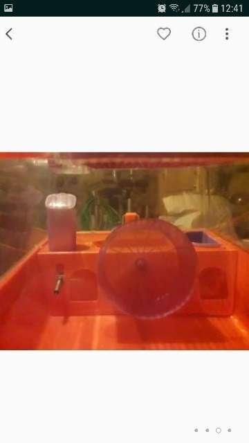 Imagen producto Jaula y bola hamster 3