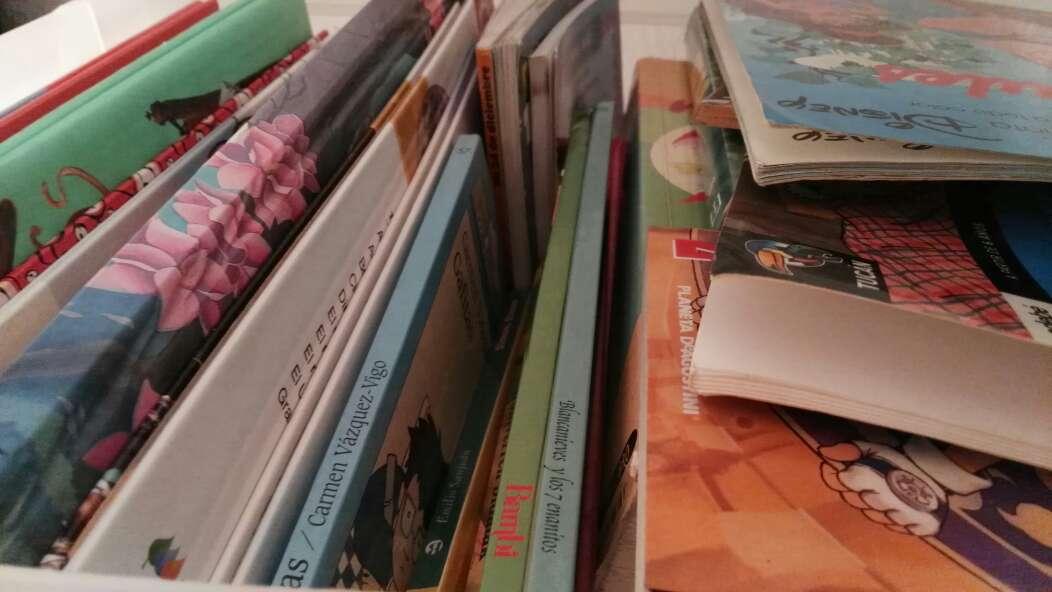 Imagen libros en castellano y en euskera