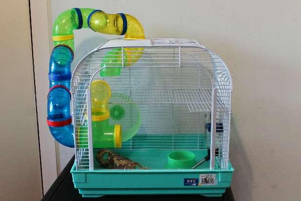 Imagen Jaula animal roedor