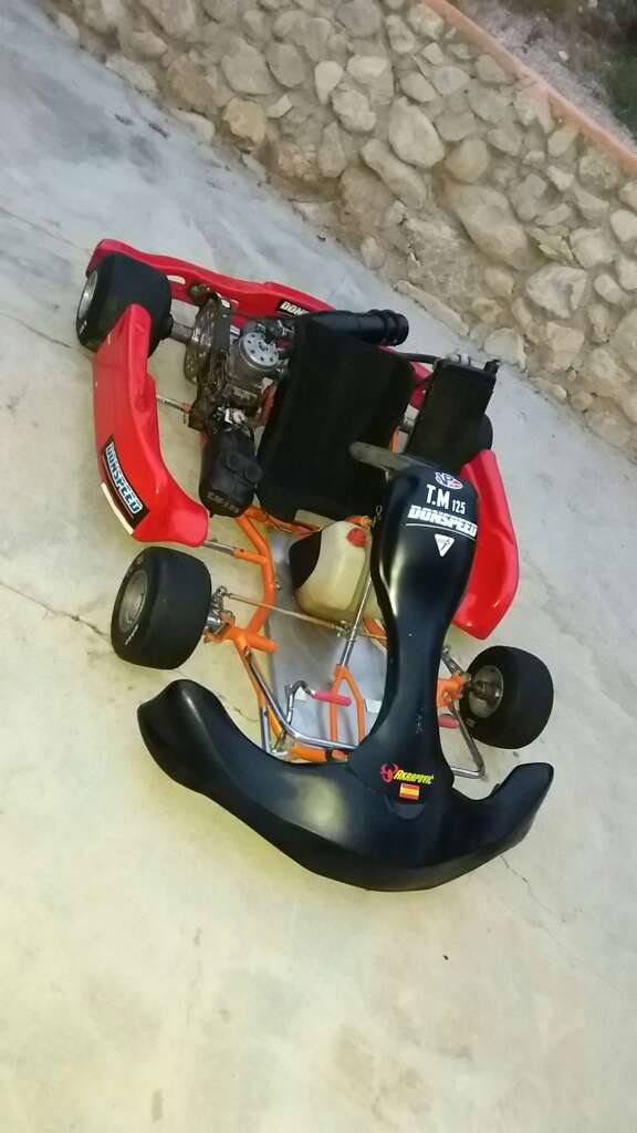 Imagen producto Kart tm 125 competiccion de tiro directo. 3
