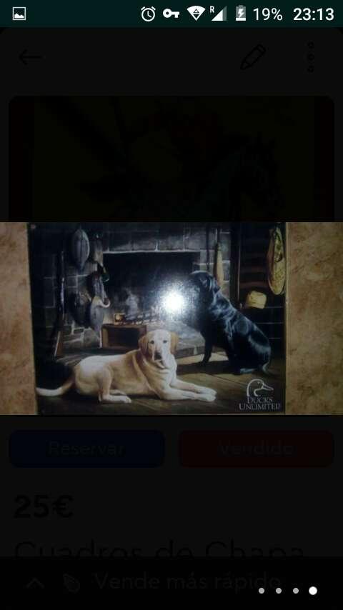 Imagen producto Cuadros de chapa 30x40cm 4