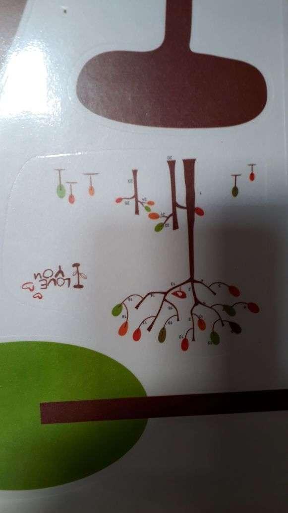 Imagen producto Sticker decorativo pared 2