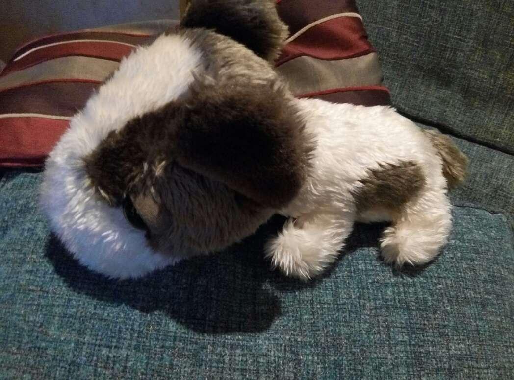 Imagen Peluche perro cabezón