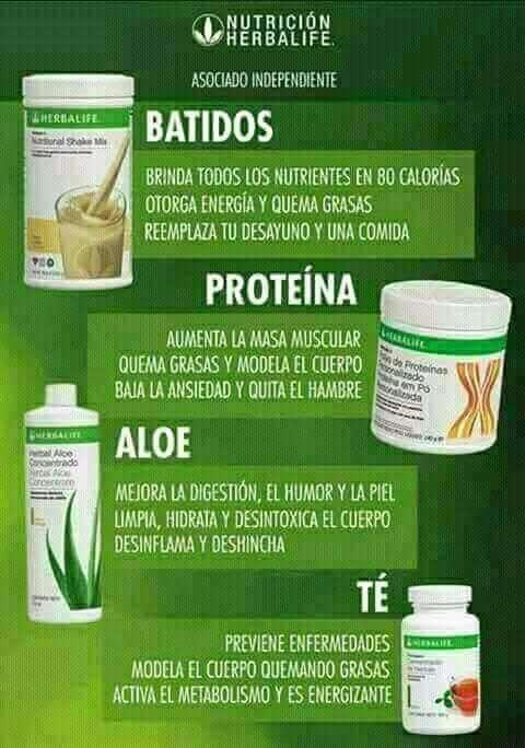 Imagen producto Herbalife batidos 2