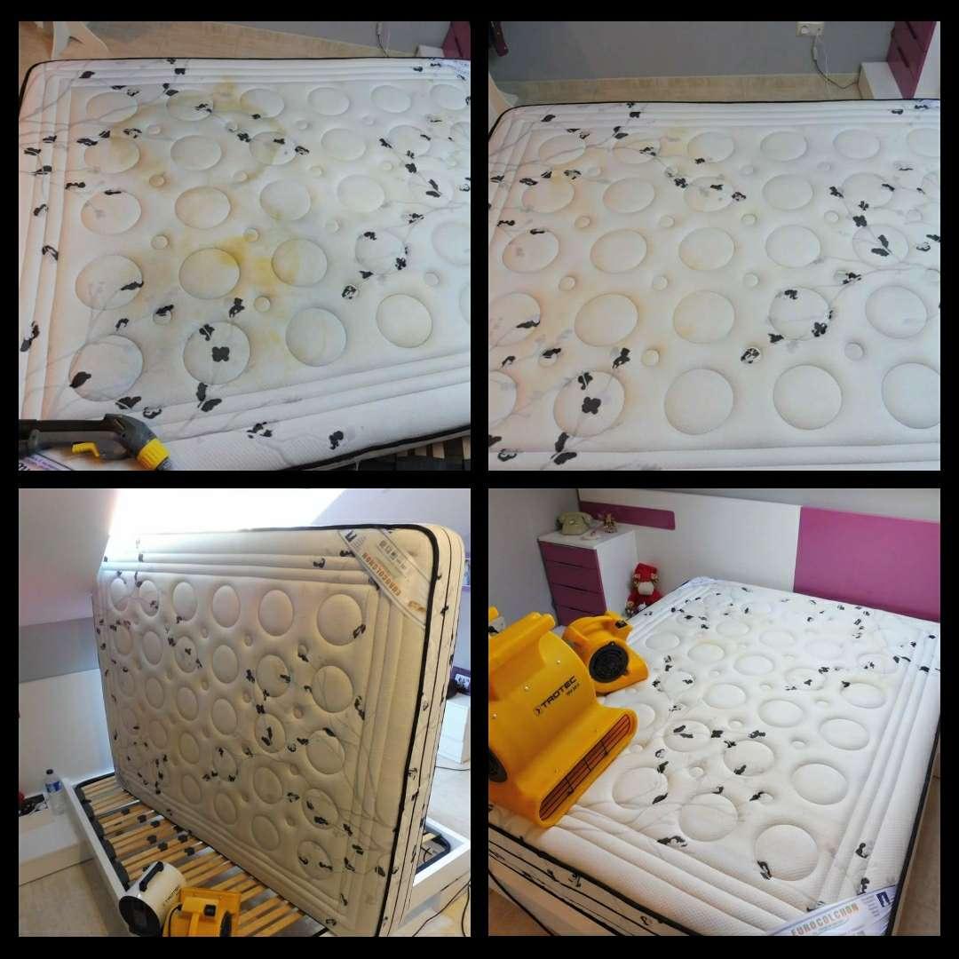 Imagen producto Lavado y desinfección de colchones a domicilio 3
