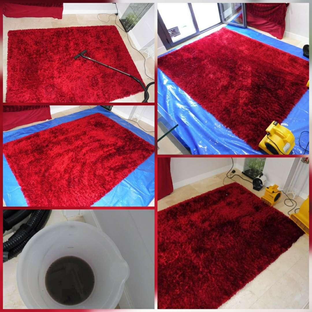 Imagen producto Limpieza de alfombras a domicilio 4