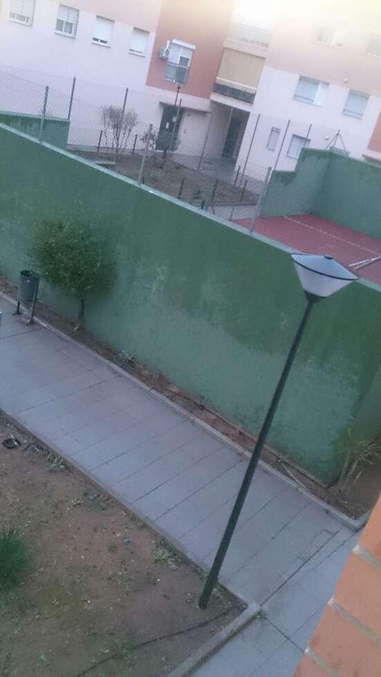 Imagen producto Piso en Huerta sola 2