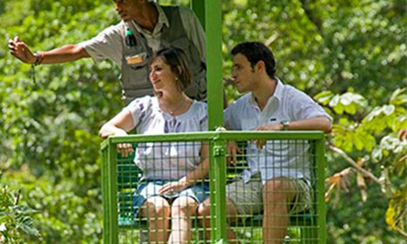 Imagen Isla de los Monos y Teleferico en Gamboa con PANAMÁ 507 Tours