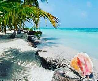 Imagen Tour a San Blas Panama 5 destinos Pasadia con PANAMÁ 507 tours 5 estrellas