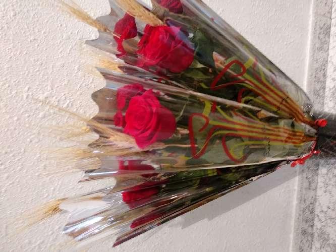 Imagen Rosa de sant Jordi