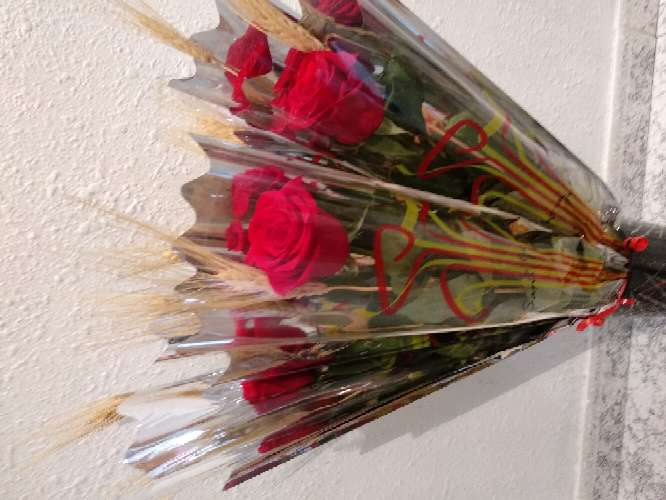 Imagen producto Rosa de sant Jordi 1