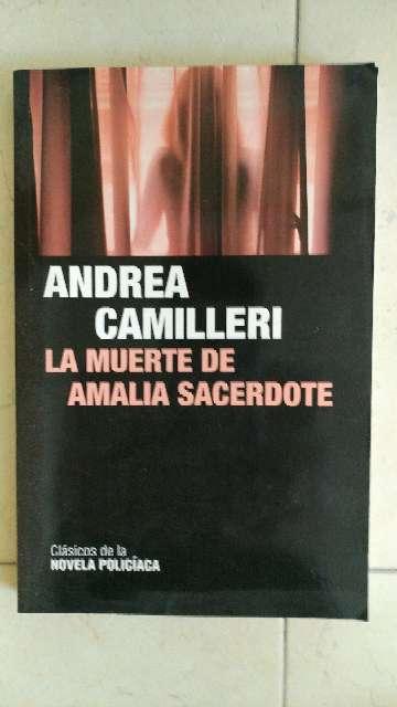 Imagen Libro la muerte de amalua sacerdote