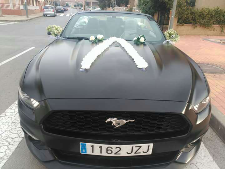 Imagen producto Alquiler Mustang descapotable 4