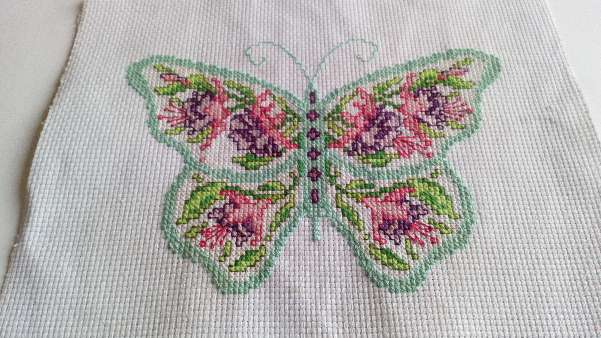 Imagen Cuadro de mariposa