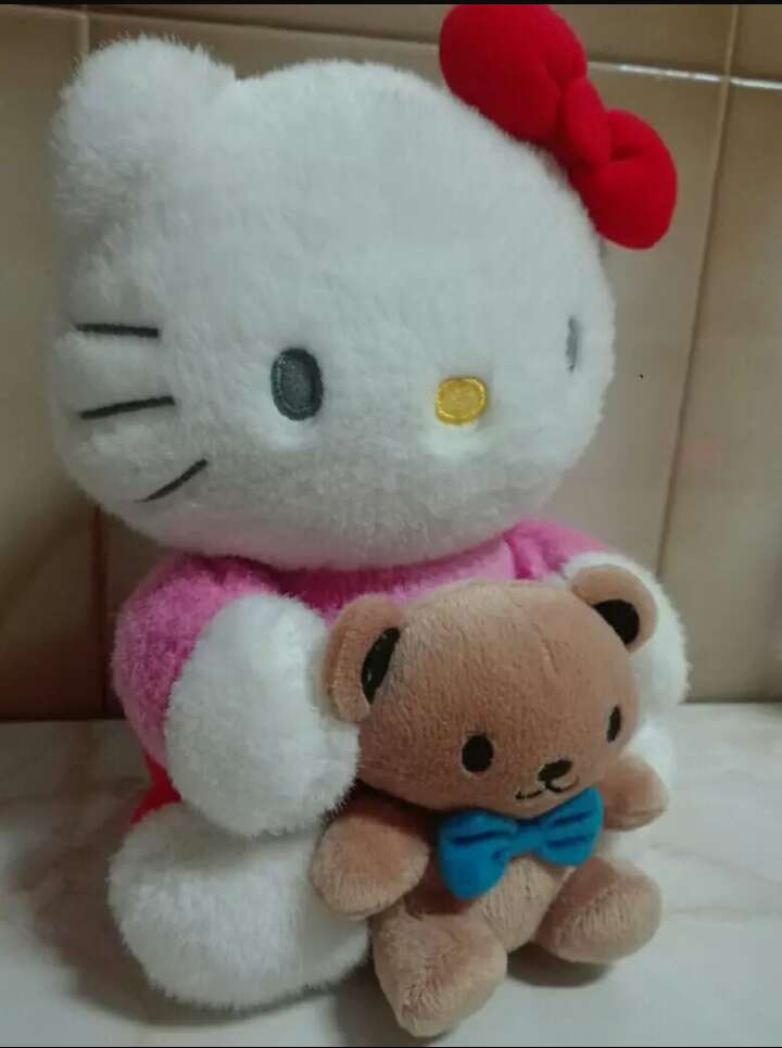 Imagen producto Peluche Hello Kitty 3