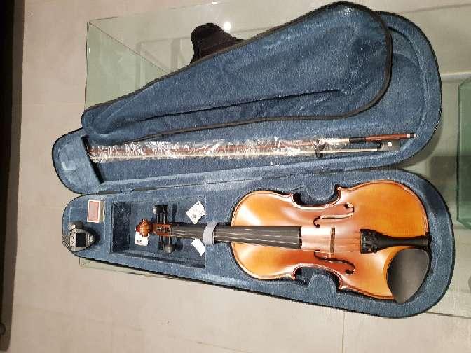 Imagen violin carlo giordano vs1 4/4 sin usar