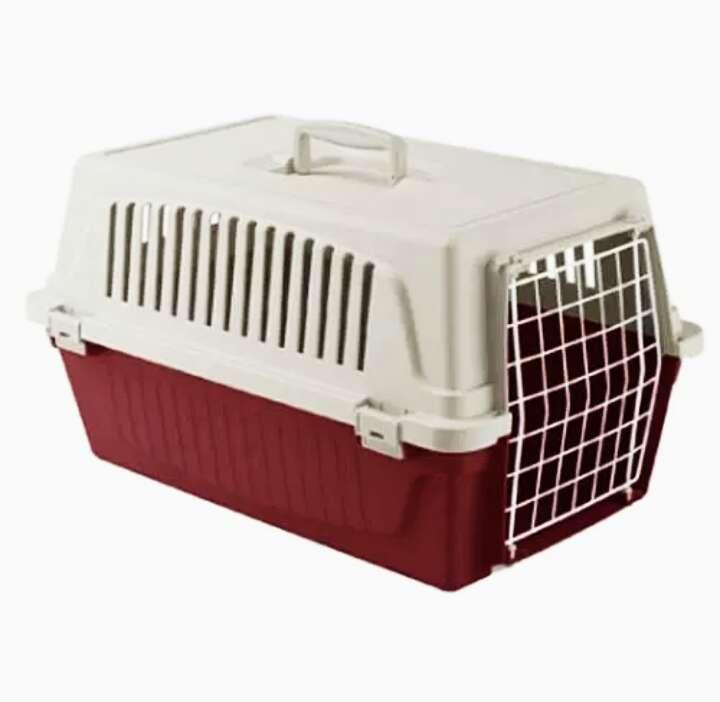 Imagen Transpotin perros y gatos