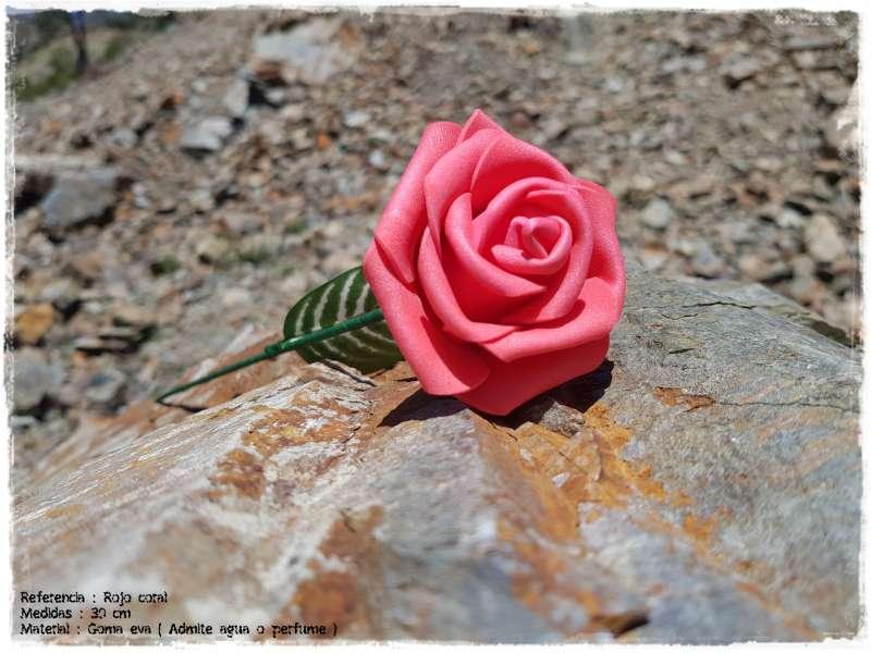 Imagen rosas GomaEva 1 EURO!!!!