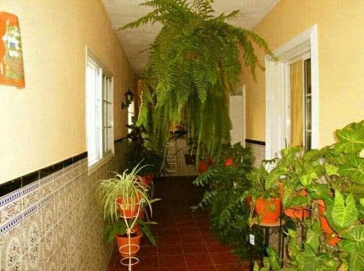 Imagen producto Casa en ingenio  4