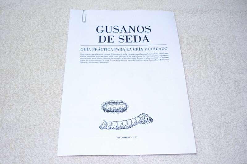 Imagen Guía práctica para la cría y cuidado de gusanos de seda