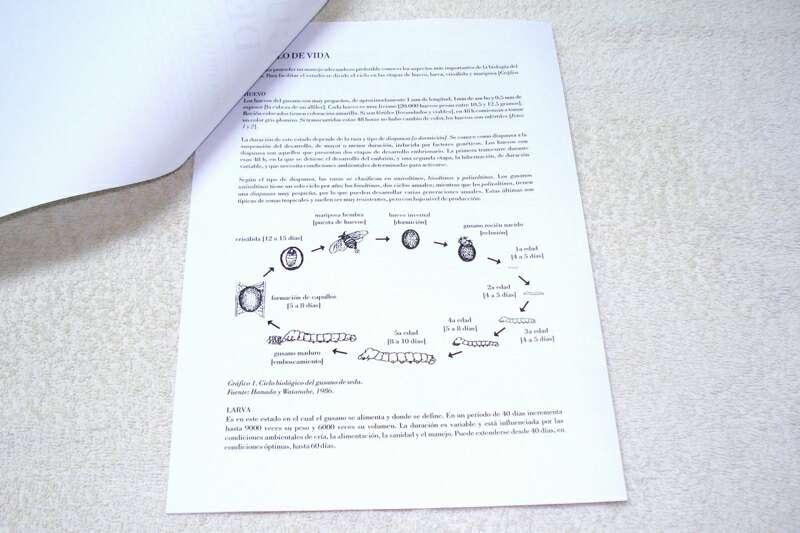 Imagen producto Guía práctica para la cría y cuidado de gusanos de seda 2