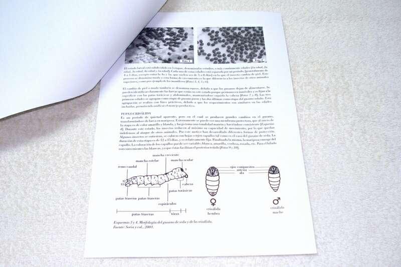 Imagen producto Guía práctica para la cría y cuidado de gusanos de seda 3