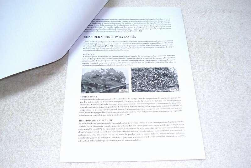 Imagen producto Guía práctica para la cría y cuidado de gusanos de seda 4