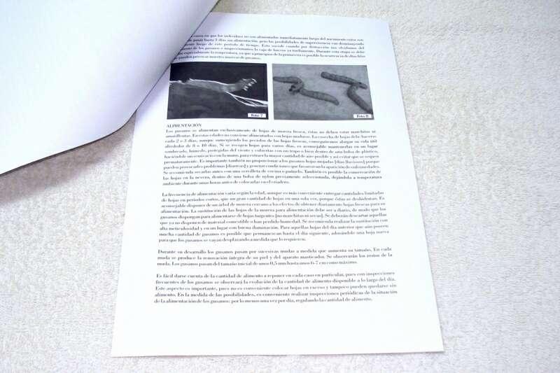 Imagen producto Guía práctica para la cría y cuidado de gusanos de seda 6
