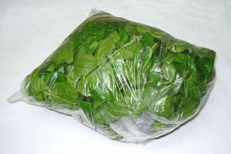 Imagen producto Bolsa con 450 grs de hojas de morera Morus Alba 3