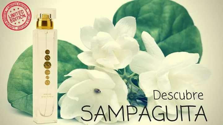 Imagen producto Perfume SAMPAGUITA 2