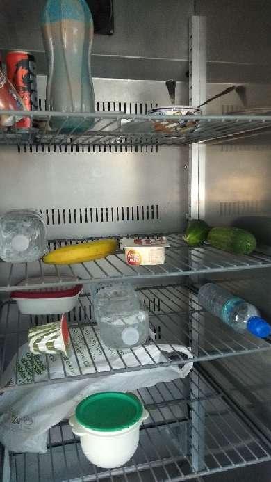 Imagen vitrina,botellero,cámara, frigorífico, feigorifica