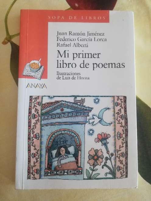 Imagen Mi primer libro de poemas