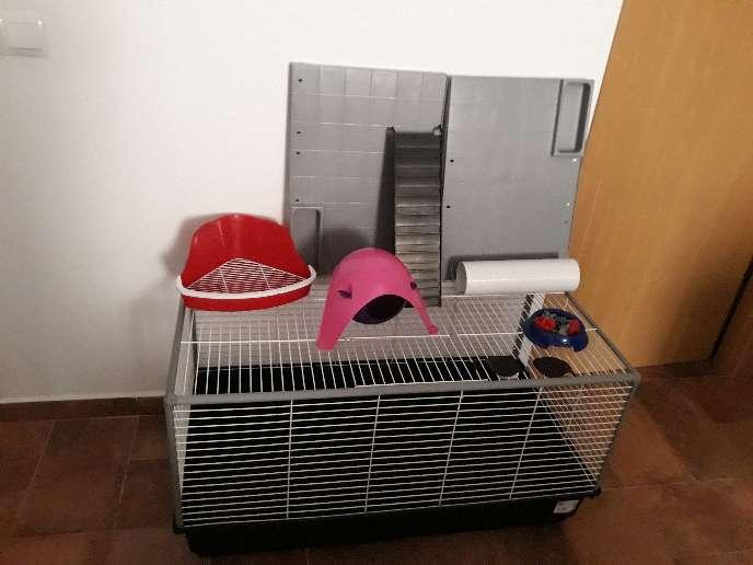 Imagen Jaula roedor conejo huron hamster rata