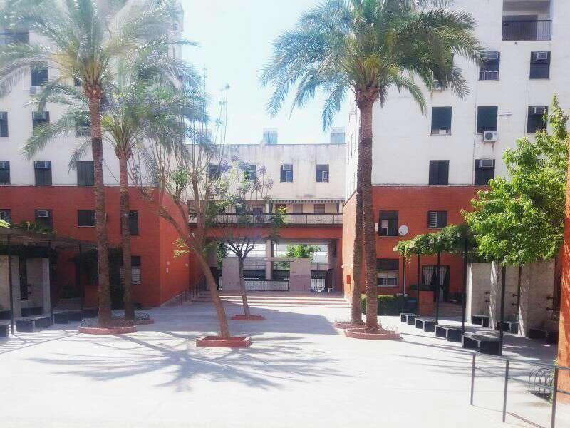 Imagen producto Se Vende en Sevilla Capital  3