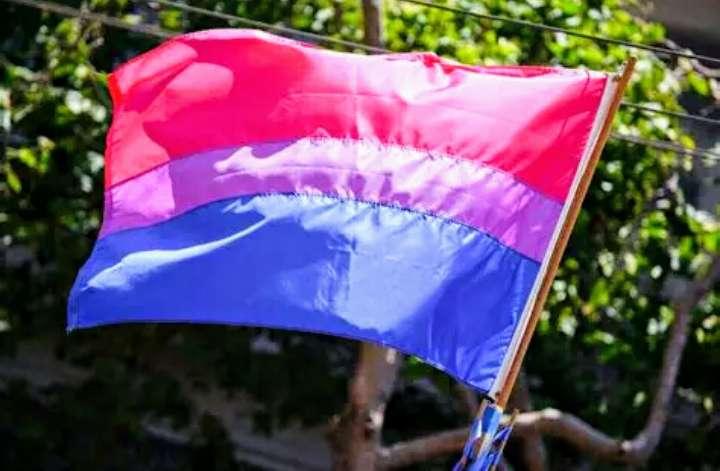 Imagen Bandera Bisexual