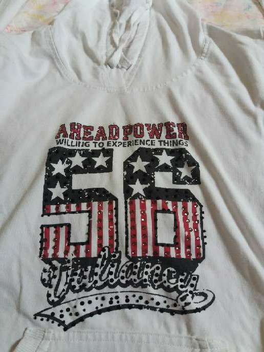 Imagen producto Camiseta / sudadera 2