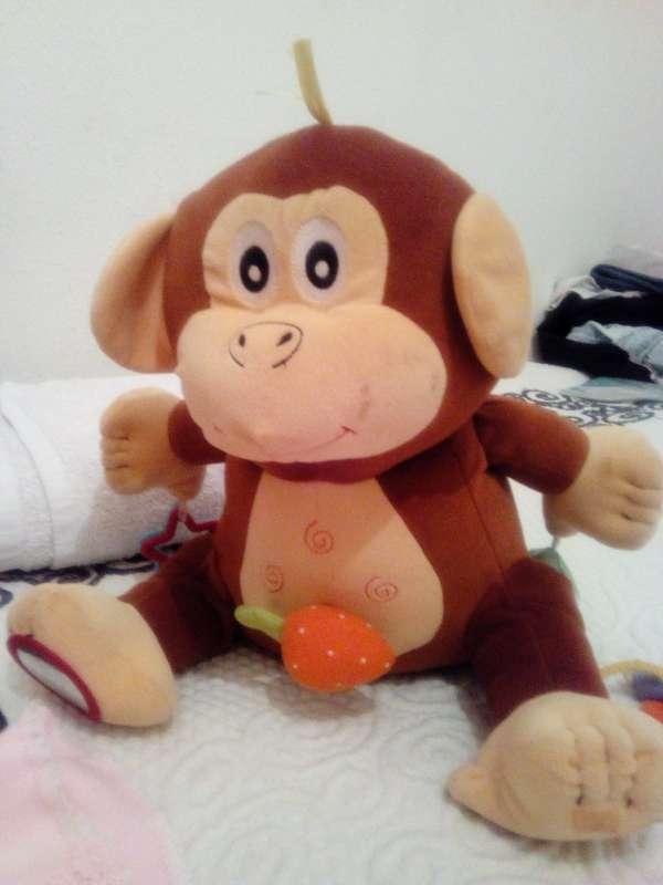 Imagen Mono cantaría