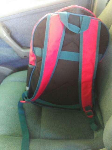 Imagen mochila escolar da ladybug